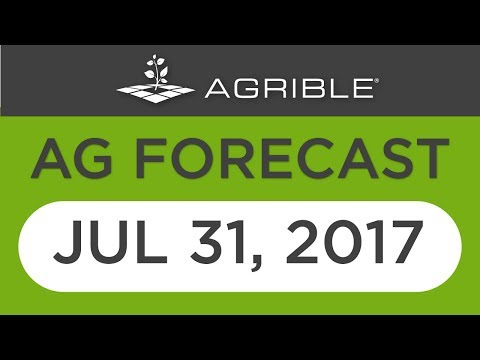 Morning Farm Report Ag Forecast - July 31, 2017