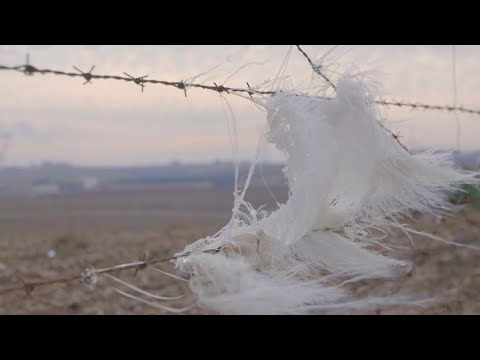 Moti Kahana, un homme d'affaires israélien a créé un fond pour financer les mercenaires en Syrie.de YouTube · Durée:  2 minutes 32 secondes
