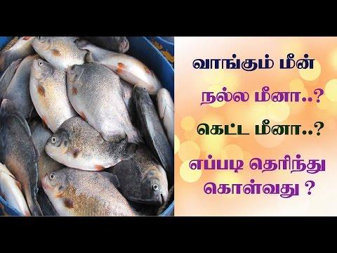 how to buy good fish in tamil | நல்ல மீனை எப்படி பார்த்து வாங்குவது ?