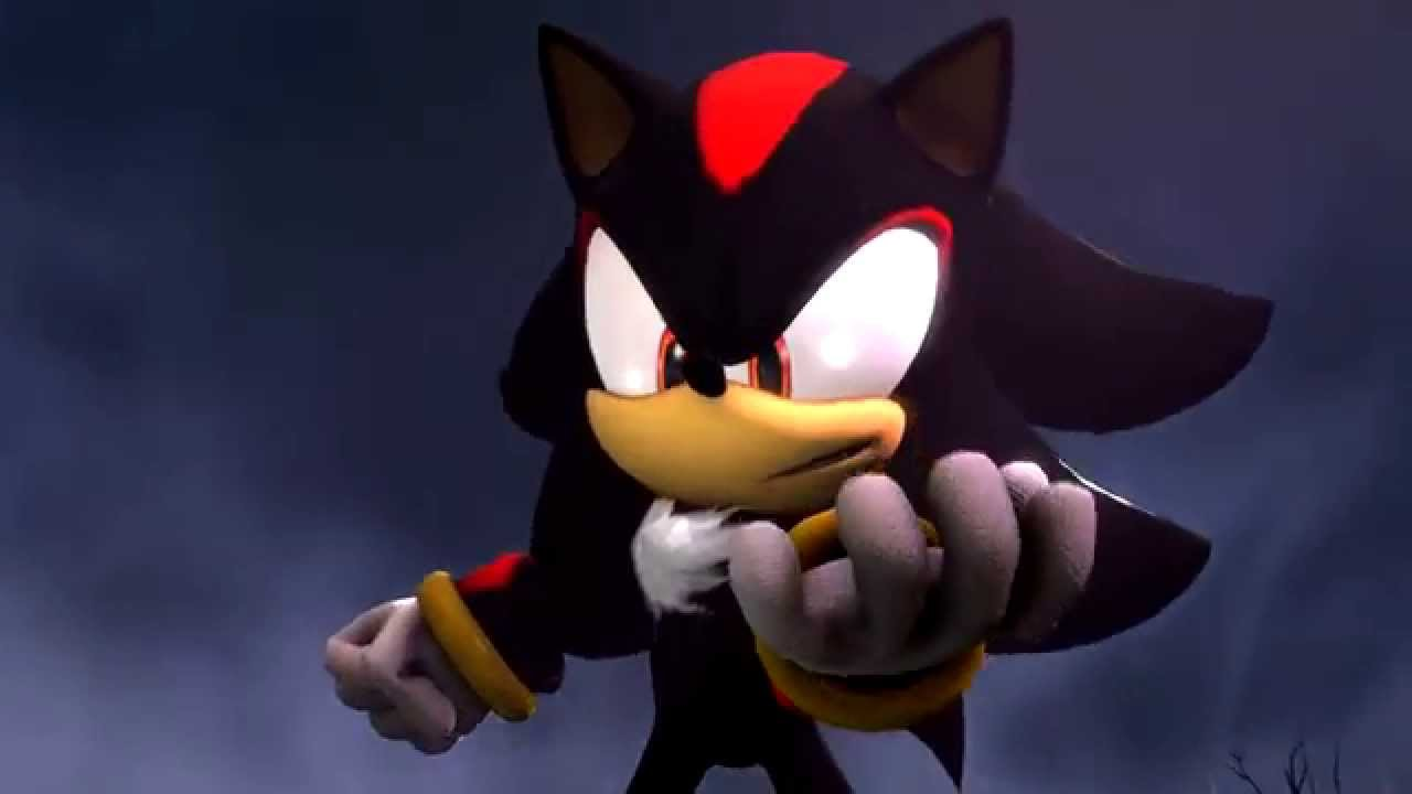 Shadow The Hedgehog And Sonic The Hedgehog Fighting