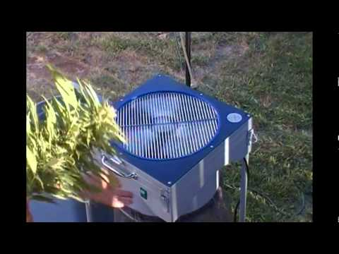 marijuana power trimmer expert trimmer how to & in use