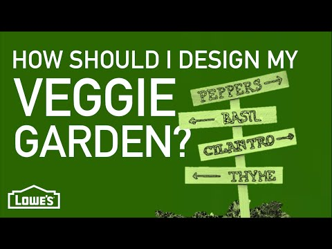 How Should I Design My Vegetable Garden? | Gardening Basics w/ William Moss
