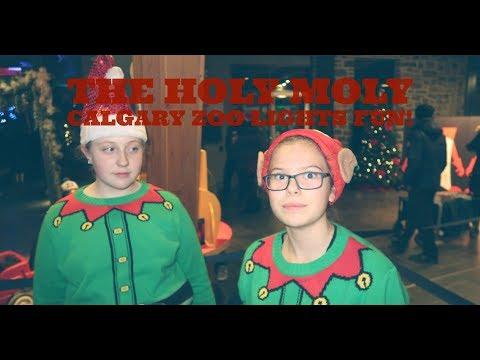 """Good times at the Calgary Zoo's """"Zoo Lights"""" good Christmas times!"""