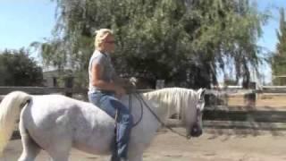 Bareback Riding - Horseback 101