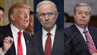 'There will be holy hell to pay': Graham warns Trump not to fire AG Jeff Sessions