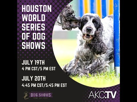 2018 Houston World Series of Dog Shows - Day 1