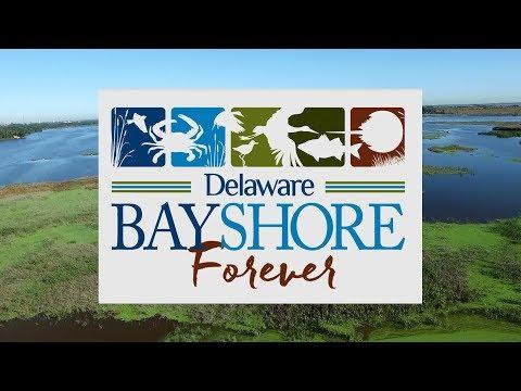 Delaware Bayshore Forever