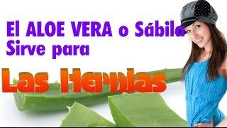 El Aloe Vera Sirve Para la HERNIA HIATAL- Un Remedio Natural para la hernia de hiato es la Sábila