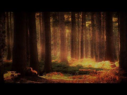 Fantasy Waltz Music - Autumn Folk