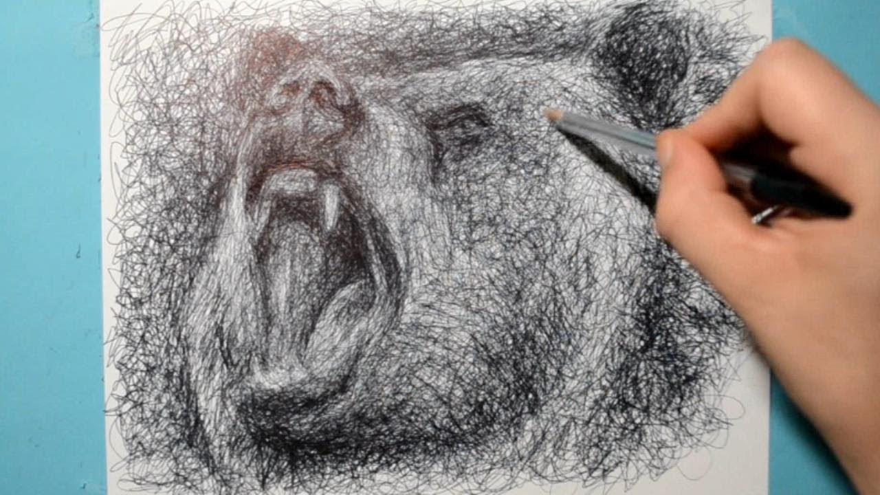 Grizzly Bear Drawing / Ballpoint Pen Study / Scribble Art Therapy / Day 027