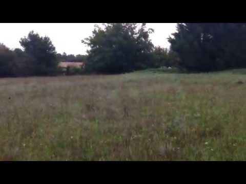 Maisons ali nor terrain sainte mondane youtube for Maisons alienor