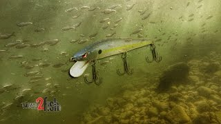 When to Fish Riprap With a Jerkbait [Video]