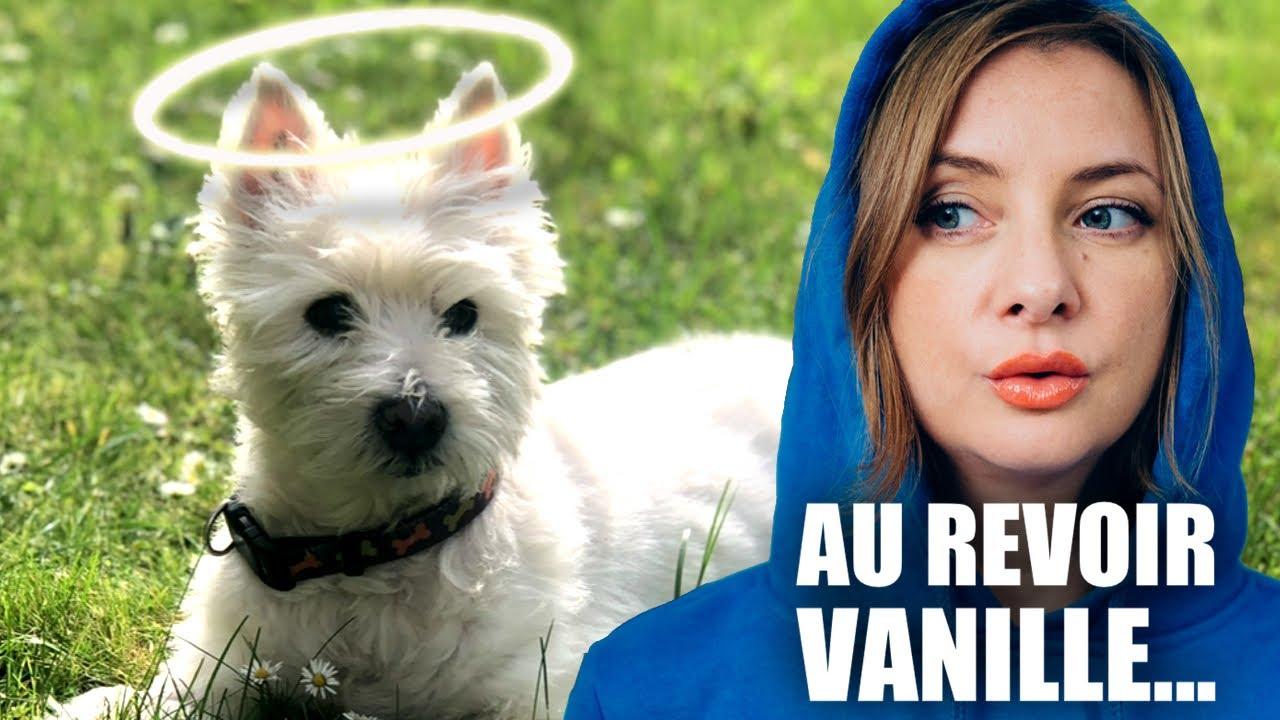 Un Dernier Au Revoir : Les anecdotes les plus drôles de Vanille.