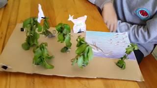 Ekosistem Modellerimiz 7-A ile