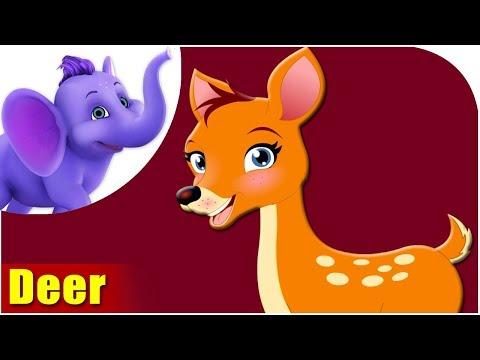 Deer - Animal Rhymes In Ultra HD (4K)