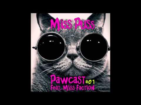 Ummet Ozcan - Raise your hands (Miss Puss Bootleg) HD