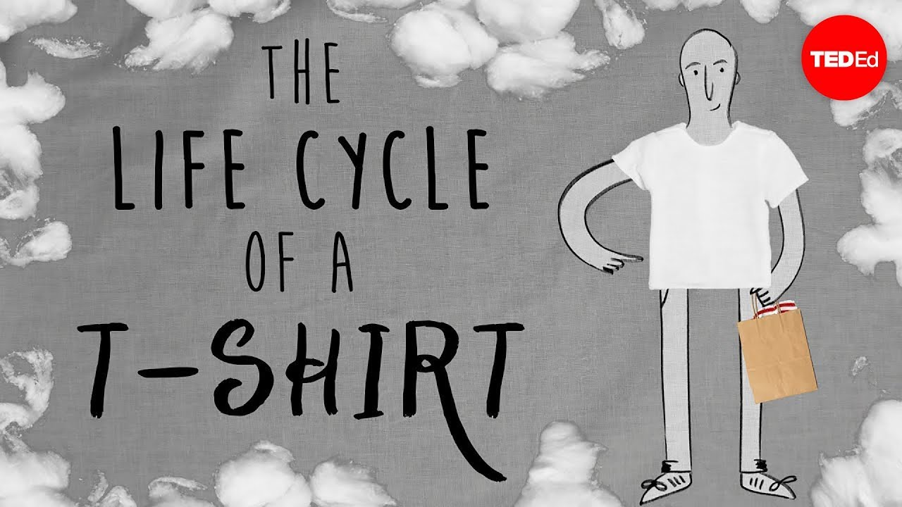 774922a18eee The life cycle of a t-shirt - Angel Chang - YouTube