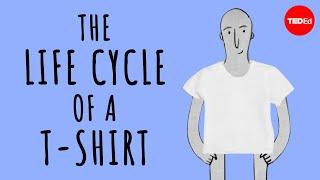 دورة حياة t-shirt - الملاك تشانغ