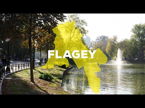 Meet My Hood - Flagey