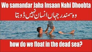 dead sea mystery can you float in the dead sea urdu hindi   bahr e murdar me insaan nahi doobta