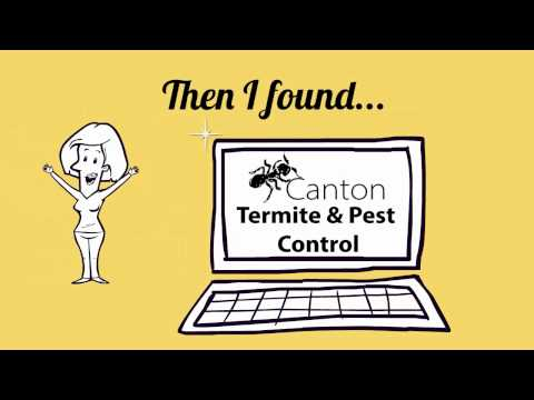 Canton Termite And Pest Control Why Use Us Youtube