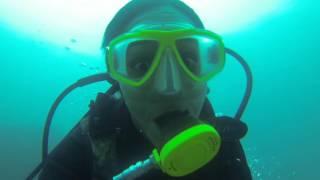 Coiba Scuba Diving