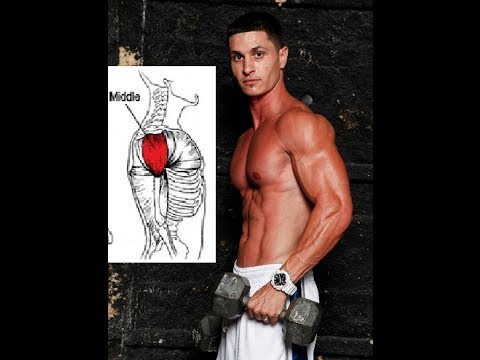 3 Little-Known Techniques for Round Shoulders - Middle ...