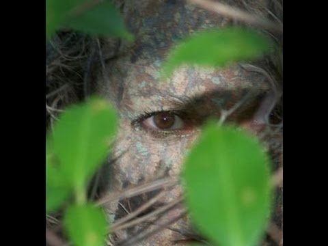 Principles of Natural Camouflage: Secrets of Invisibility