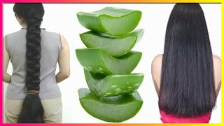 Surprising Hair Grow Long and Shiny & Soft Hair With Aloevera !! Super Fast Hair Growth Challenge!