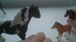 Мультик про лошадок. Лошади VS климат.