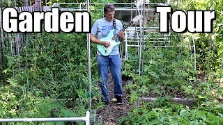 Perennial Fruit Tour (trees, berries, grapes) & Patrick Plays Guitar