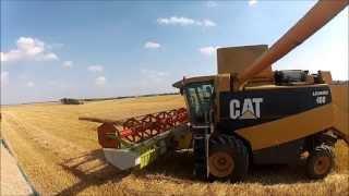 Żniwa 2013 - CAT Lexion 460 V660 (Claas) harvest Gopro
