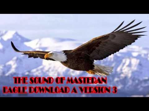 Download Suara Masteran Burung Elang Versi 3