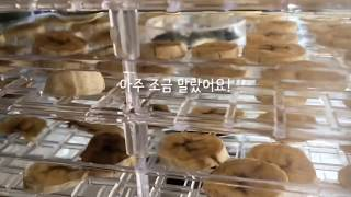 [일상] 수제간식 말린바나나 만들기v