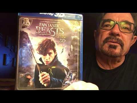 Fantastic Beasts 3D Review