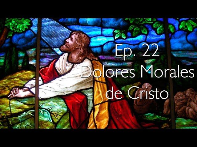 Dolores Morales de Cristo - Perseverancia