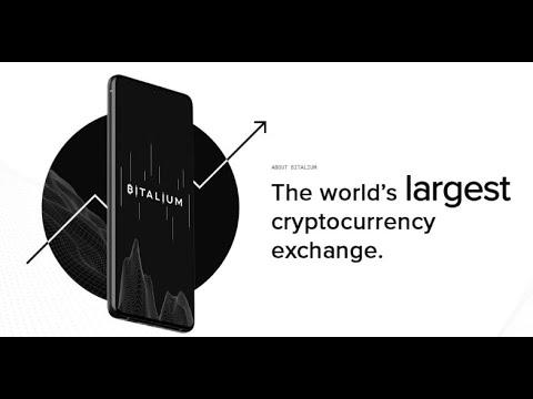 Trading crypto auto entrepreneur