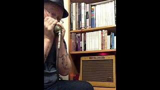 You Gotta Move - Hohner Thunderbird harmonica in low C