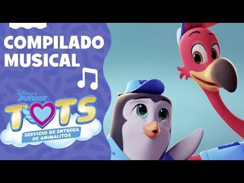 🎶 Mix De Canciones Y Aventuras | TOTS: Servicio De Entrega De Animalitos