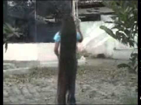 Eka, Si Rambut Panjang 1 - videox.rio