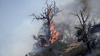 15 ezer hektáron ég az erdő Kalifornia déli részén