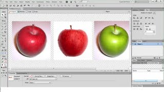 How to use the Colour Replace tool in Adobe Fireworks CS6