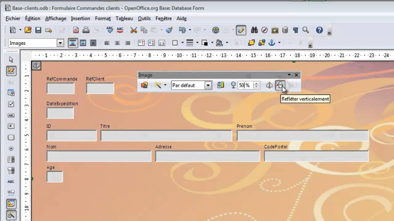Cours vidéo OpenOffice Base 8 - Personnaliser un ...