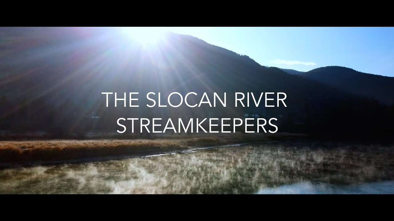 SIFCo RELEASES SLOCAN RIVER STREAMKEEPERS MOVIE