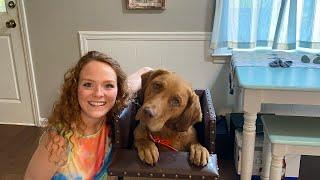 Feeding my dog with megaesophagus in his Bailey chair