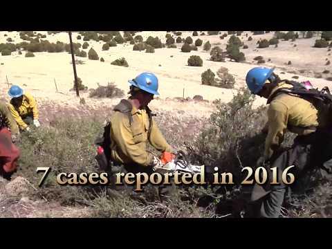 Rhabdomyolysis and Wildland Firefighters