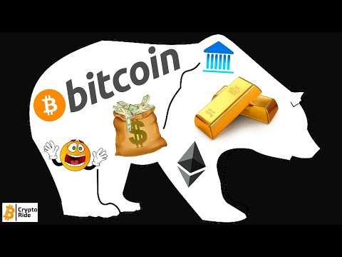 Bear Markets Surround Us- FED Can't Help- Bitcoin to Prevail- Cryptocurrency News