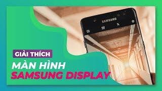 Giải thích| Màn hình iPhone Xs Max đẹp hoàn toàn do công Samsung?