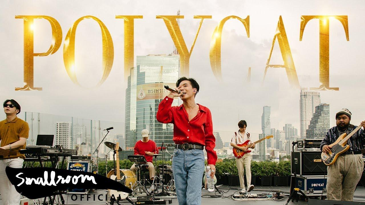 POLYCAT - มานี่มา | MANEEMA [Official MV]