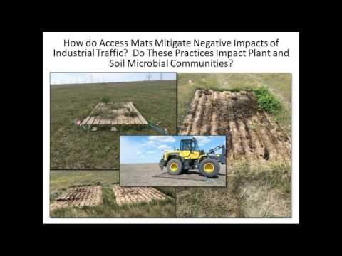 Impacts of Industrial Disturbance on Soil Microbial and Plan